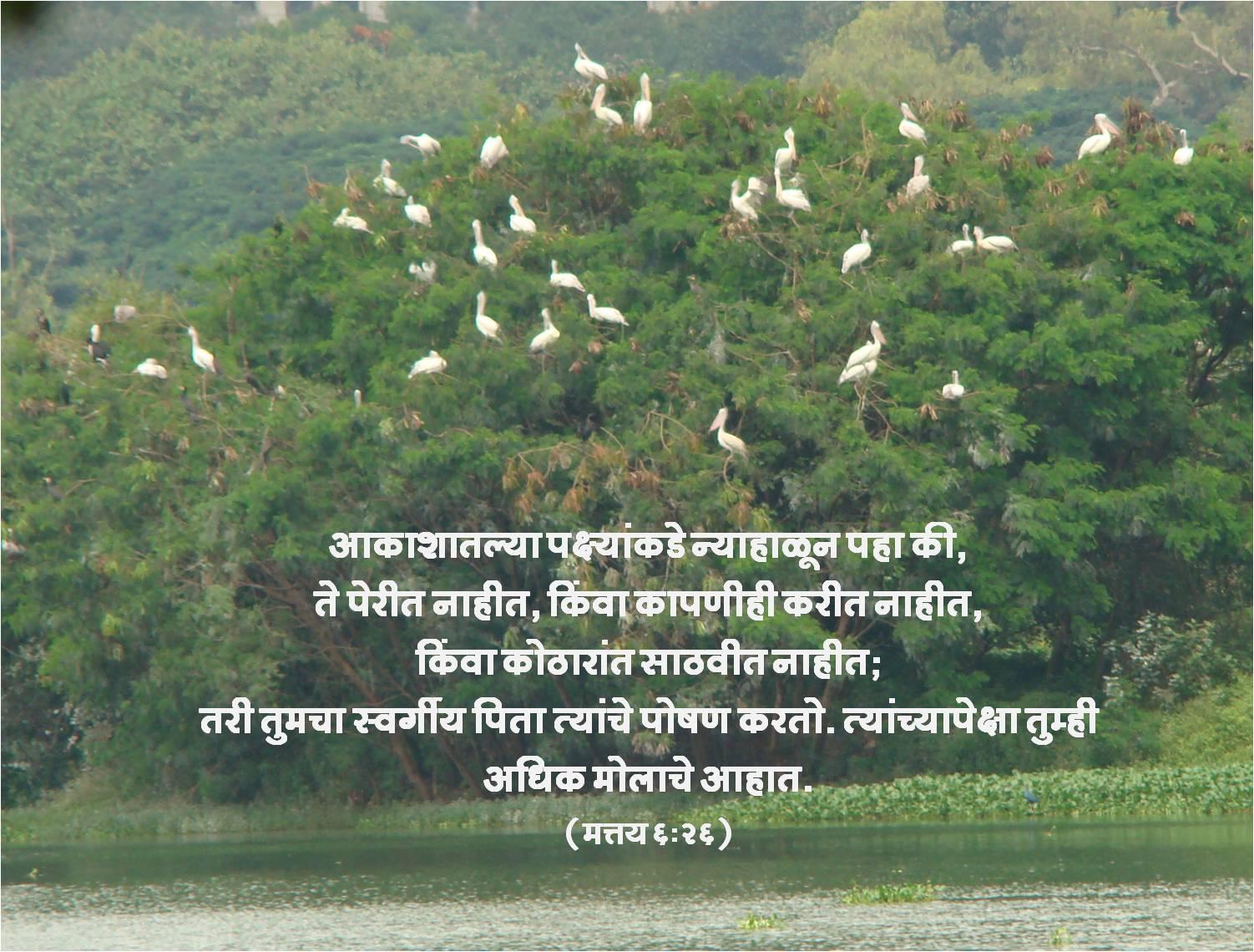 marathi bible wallpaper for - photo #24